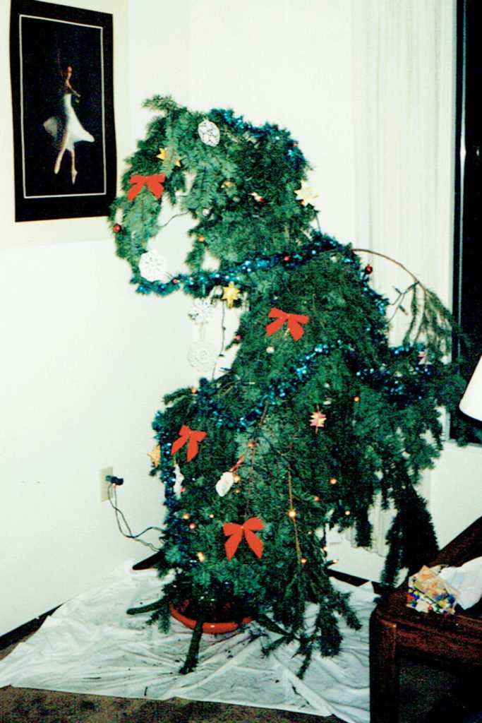 T'was the Night Before Christmas--What Really Happened. What happens when you come home the day before Christmas and there is no tree? You'll never guess what my mom did.