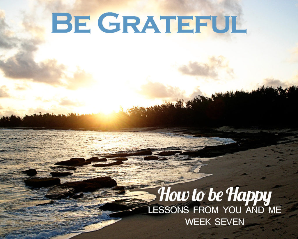 I have never met a constant complainer who was happy, and I have never met a grateful person who was chronically sad. The question is, which kind of person will you be? Read this article for practical advice on how to be more grateful.