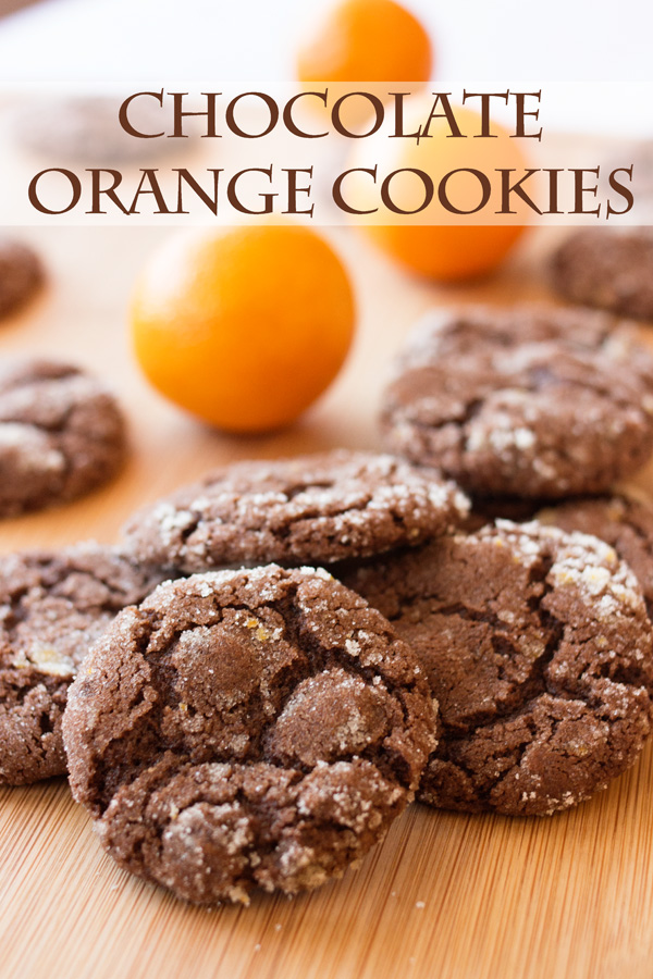 Chocolate Orange Cookies And The Great Food Blogger Cookie