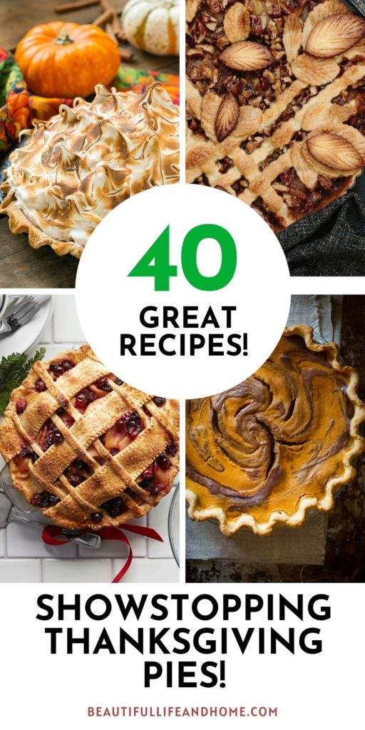 Thanksgiving pies that are sure to impress! There's a pie here for everybody!