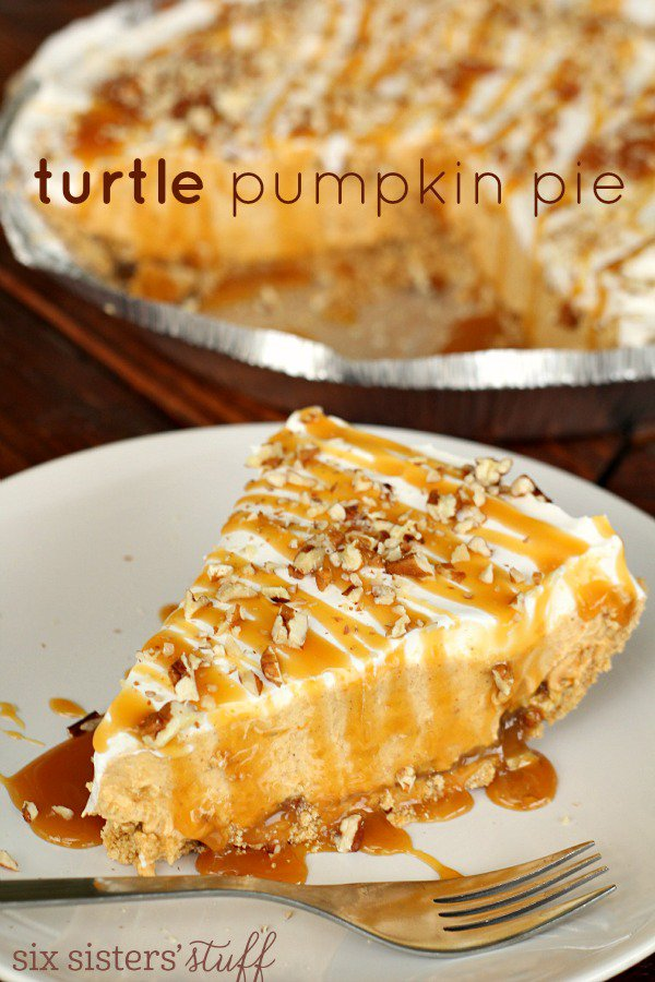 turtle-pumpkin-pie-from-sixsistersstuff-com_