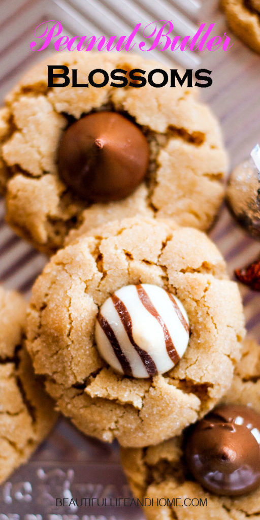 Grab your Hershey's Kisses! Peanut Butter Blossoms are the most popular Christmas cookie! These cookies are fun to make with kids and are always welcomed for cookie exchanges!